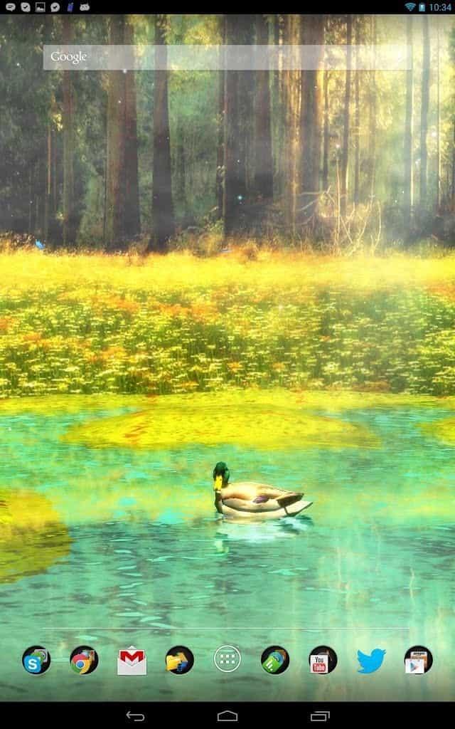 Ducks 3D FULL живые обои