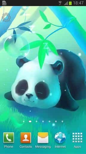 Bamboo Panda живые обои