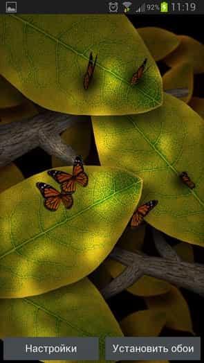 Tap Leaves живые обои
