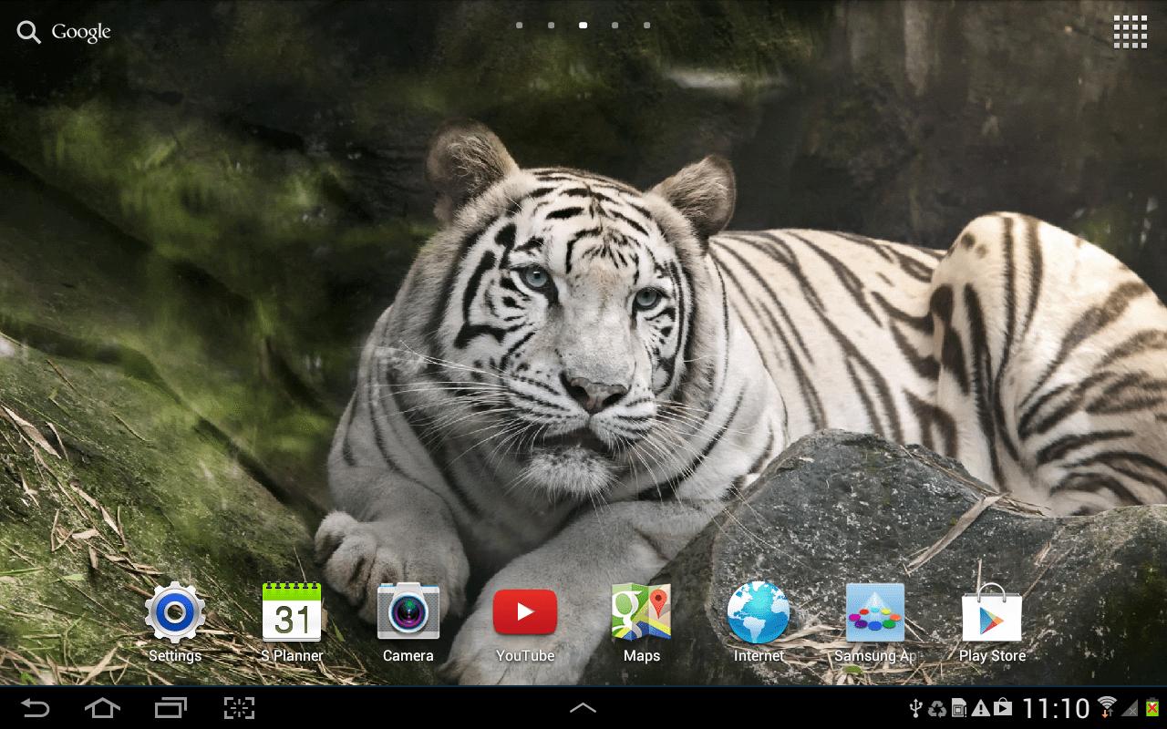 tigr скриншот 1