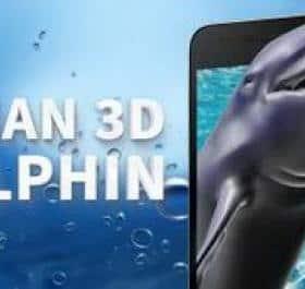 Ocean 3D Dolphin