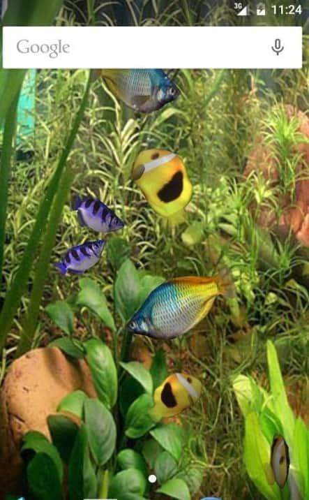 Aqua 3D Live Wallpaper