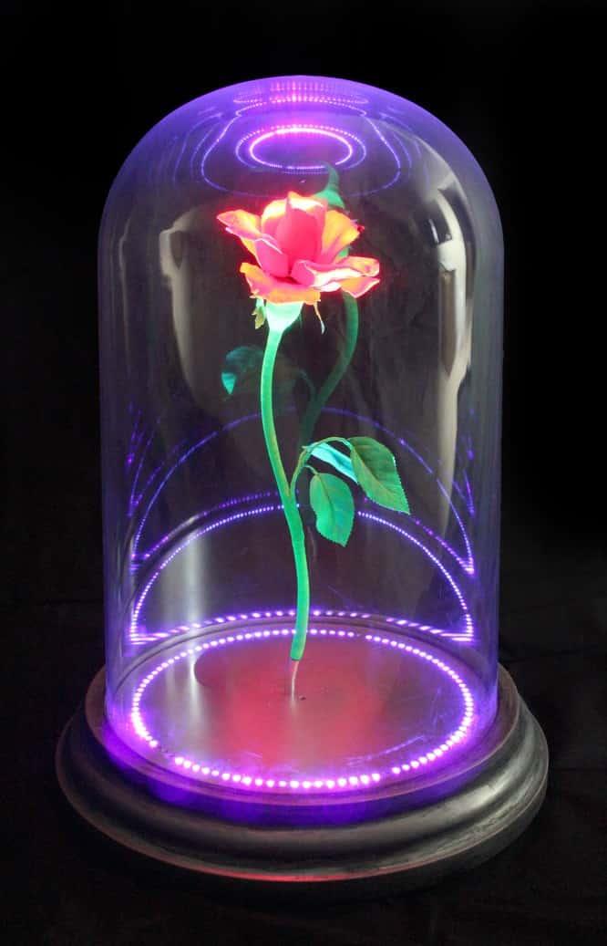 Enchanted Rose живые обои