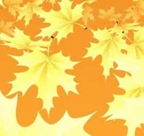3D Maple Leaves