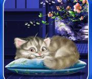 sleeping cat logo