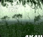 4K Rain logo