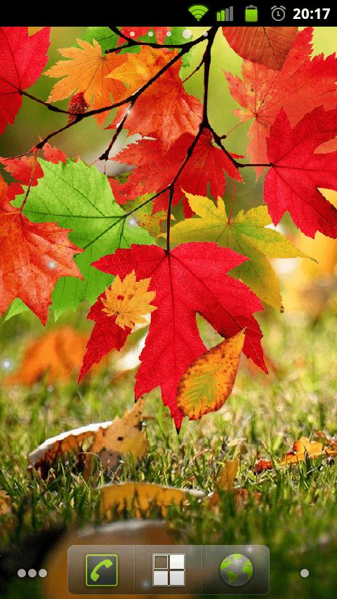 Осенний Листопад живые обои
