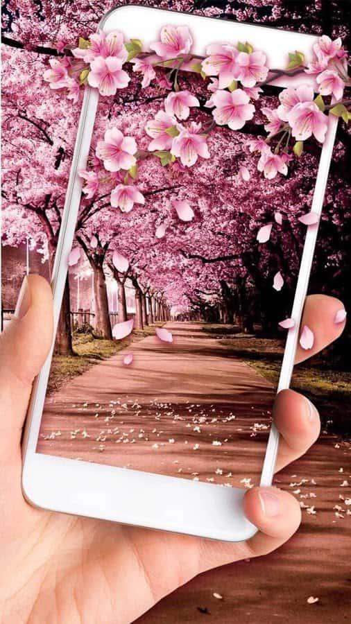 Romantic Sakura живые обои