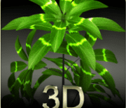my 3d plant logo