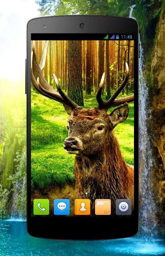 3D animals parallax скриншот 1