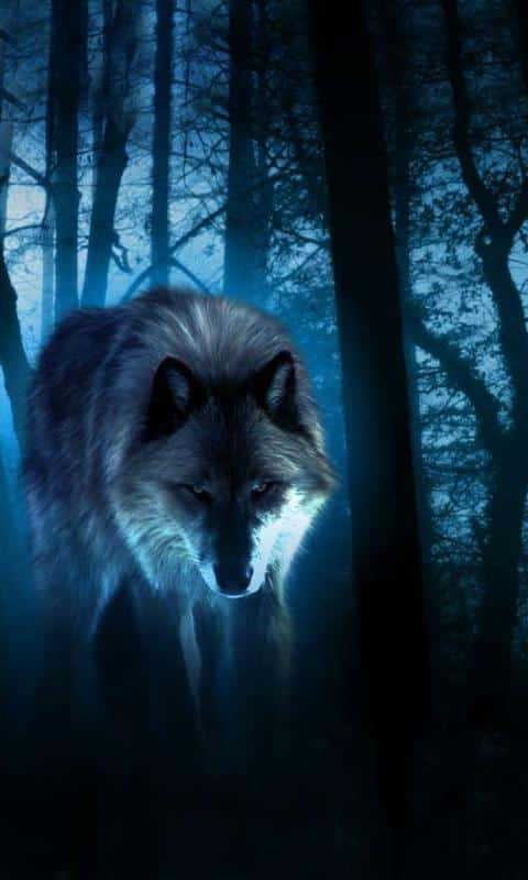 Wolves Night скриншот 3