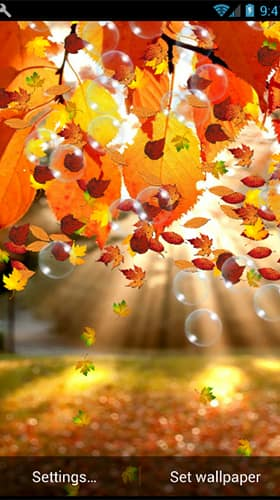 autumn скриншот 2