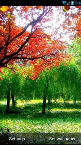 autumn скриншот 3
