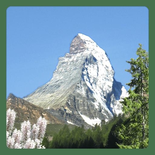 Mountain Summer logo