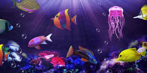 akvarium ryby скриншот 2