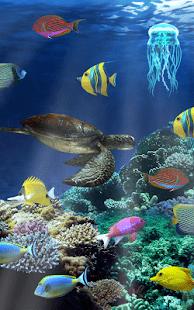 akvarium ryby скриншот 3