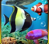 akvarium ryby logo