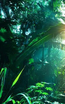 Джунгли скриншот 1