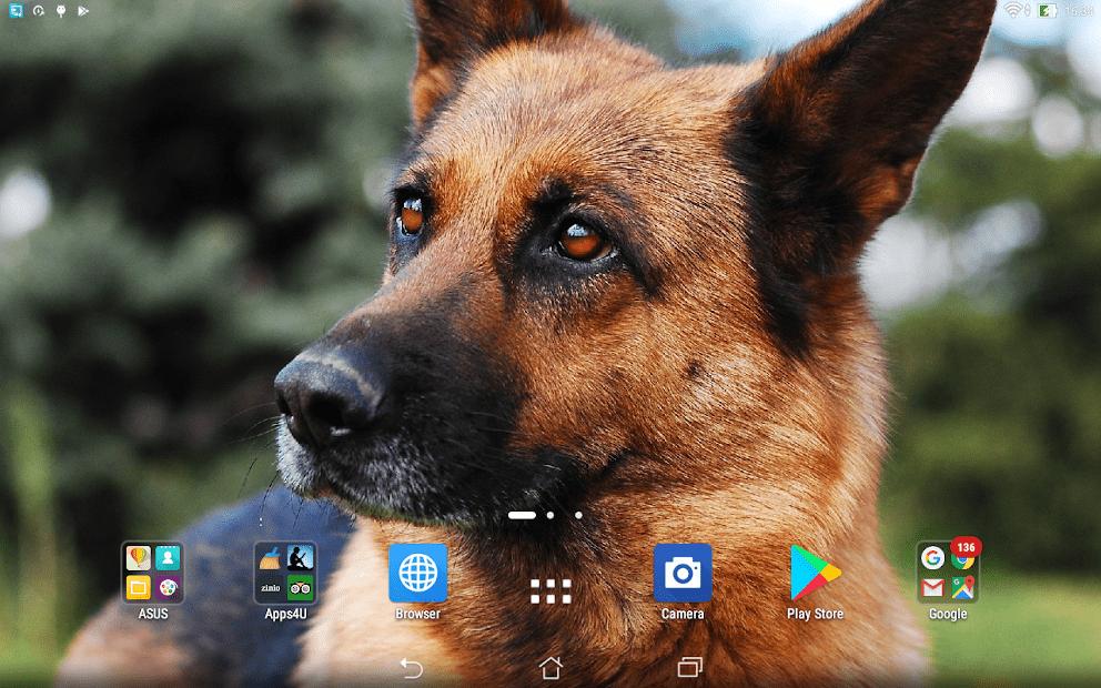Овчарки скриншот 4