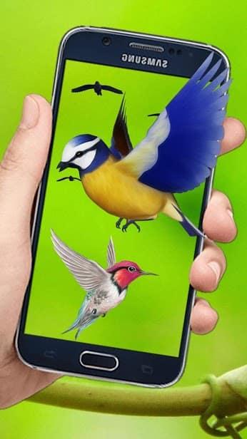Летающие птицы скриншот 3
