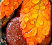Осенний Дождь logo