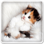 Кошка logo