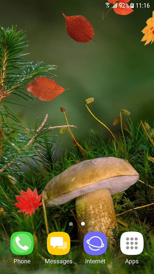 Красивая осень скриншот 1