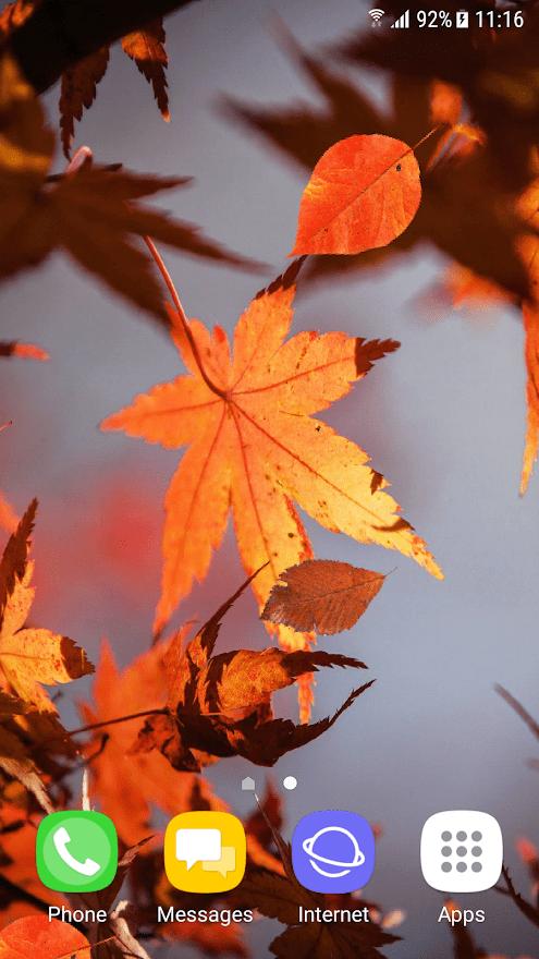 Красивая осень скриншот 2