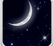Ночное Небо logo