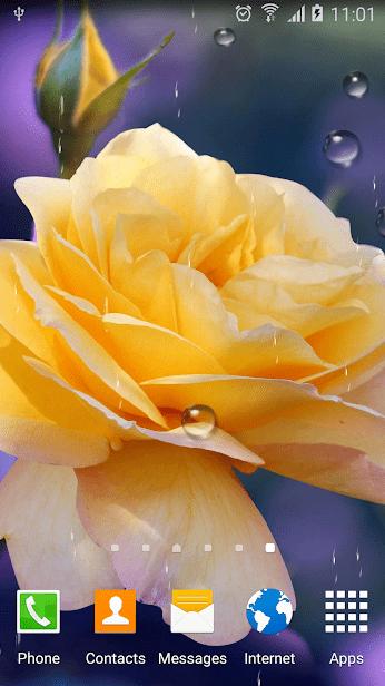 Розы скриншот 2