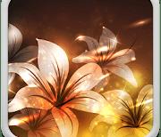Светящиеся Цветы logo