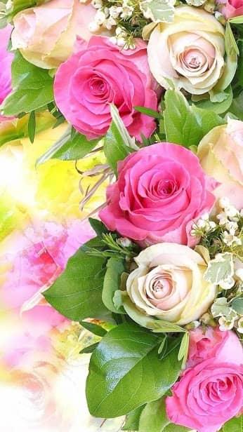 Роза, Цветочная, Цветочный фон: Rosely скриншот 2