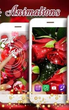 Красные Розы Любовь скриншот 2