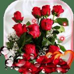 Красные Розы Любовь живые обои