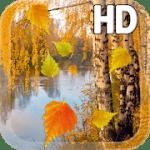 Осень живые обои HD