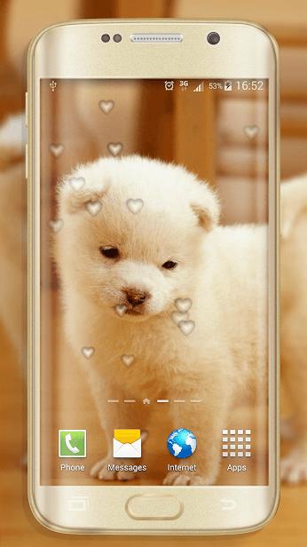 Собаки скриншот 1