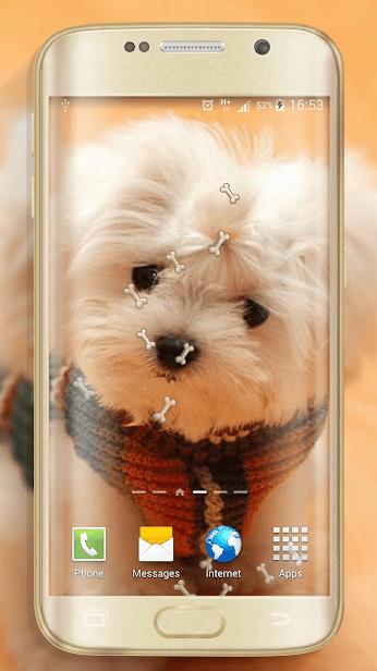 Собаки скриншот 2