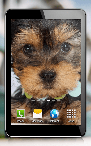 Собаки скриншот 3