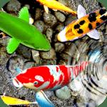 рыба живые обои: водный сад