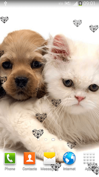 Обои животные скриншот 1