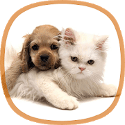 Обои животные logo