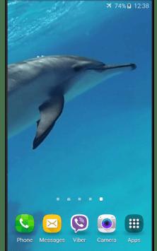 Дельфины со звуком скриншот 1