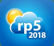 Погода рп5 (2018) logo