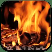 Реальный огонь logo