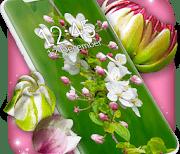 3D Blossoms logo