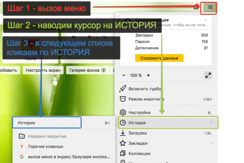 История в Яндекс Браузер