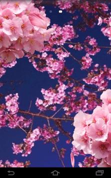 Цветы 3D скриншот 4