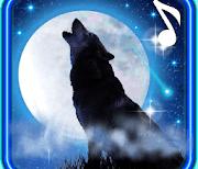 Песня Волка Луна logo