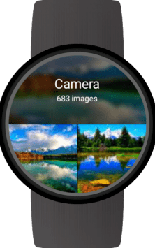 Photo Gallery for Wear OS (Android Wear) скриншот 1