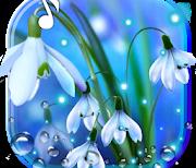 Подснежники Голубые logo